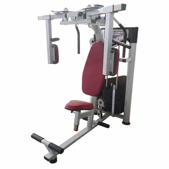 Peitoral Dorsal - Flex Fitness