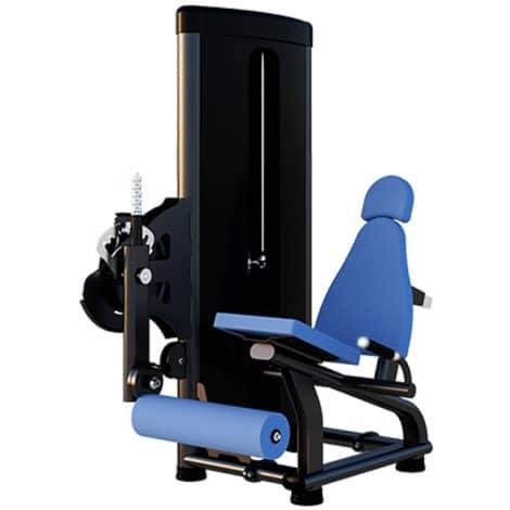 Extensor - Flex Fitness